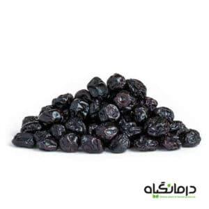 میوه خشک بلوبری Dried Blueberry Fruits