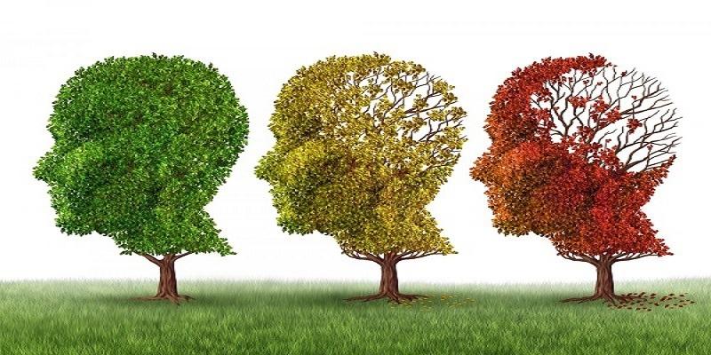درمان قطعی آلزایمر