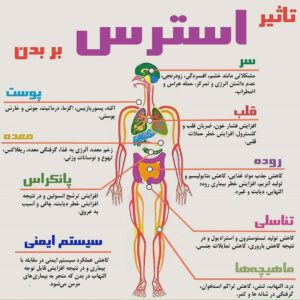 اینفوگرافی تاثیر استرس بر بدن